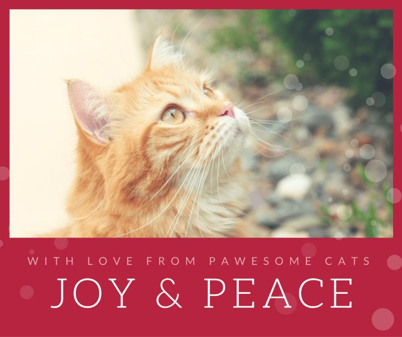 joy-peace