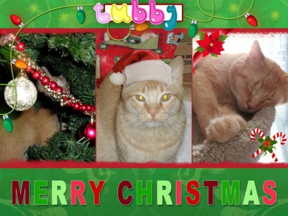 tubbychristmas
