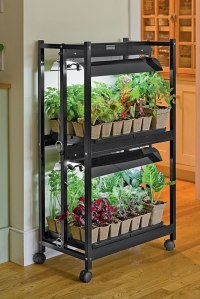 6 Best LED Grow Lights for Indoor Gardening Projects ...