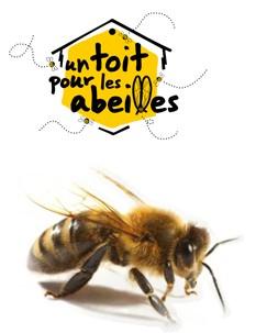 un-toit-pour-les-abeilles