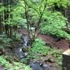 【おでかけコラム】榛名神社へ行って参りました^^