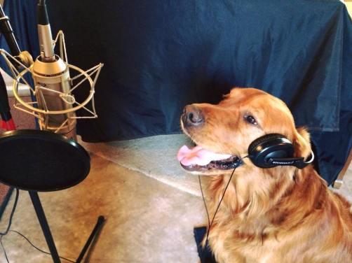 Bean in the recording studio