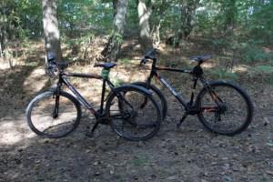 Fischland_Fahrräder