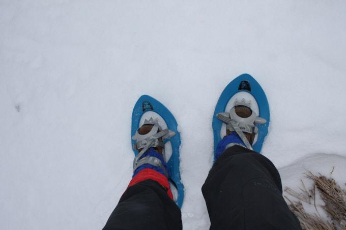 Winter_Schneeschuhe