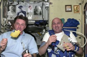 NASA is offering an award for ideas on a nutritious, tasty food system for interplanetary travel