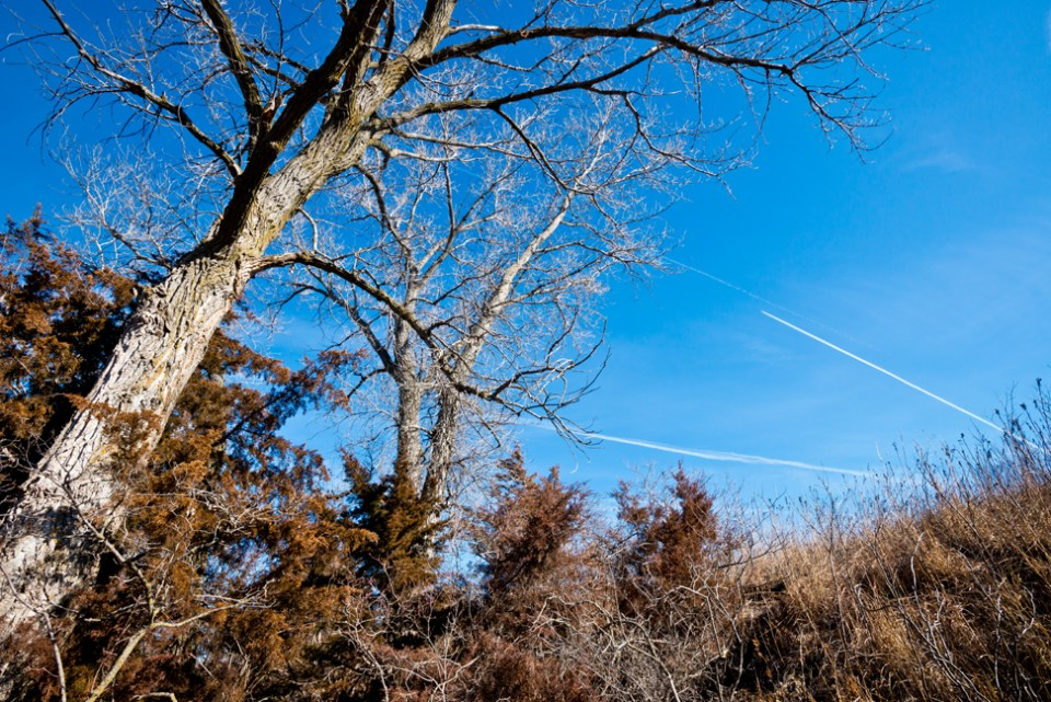 Winter Morning Contrails