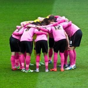 Ipswich pink huddle