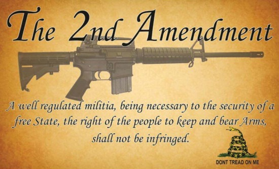 2nd Amendment, guns, shooting, AR, firearms, prepper, freedom, rights, preparedness, SHTF