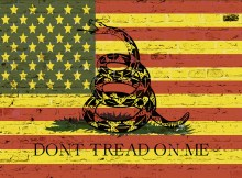 dont_tread_on_me_american_flag_yellow-web