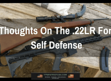 22LR, defense, SHTF, prepper, self defense, preparedness, gun, rimfire,