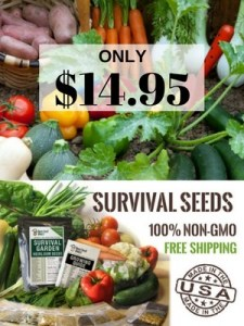 seed bank, survival SHTF, gardening, seed storage