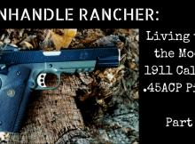 1911, 45ACP, combat pistol, CWP, SHTF, training,