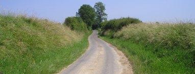 Sunken Lane 2006
