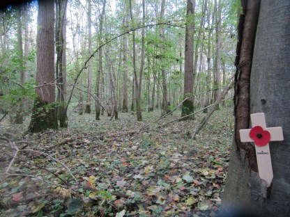 The layout of the Trones & Bernafay Wood remains the same as 1914. No trees survived though.