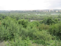 Viewing Point over Somme - Vaux Wood