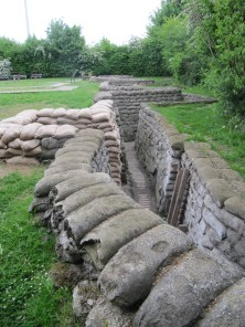 Preserved trench line