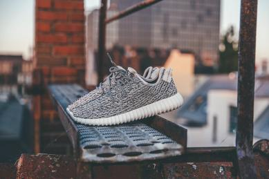 Adidas Yeezy Boost 350_02
