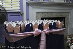 "Pink and navy ""to go"" containers for candy bar"