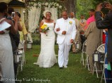 Yellow Lime Wedding-48