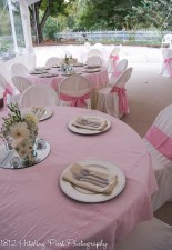 Pale pink overlays and pale pink sashes