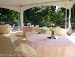 Soft pink and sage overlays