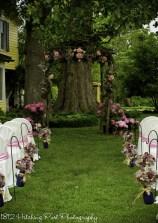 Beautiful pink flowers under the oaks