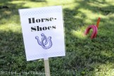 Horse shoes on lawn