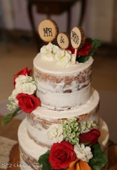 "Naked but not ""too"" naked wedding cake"
