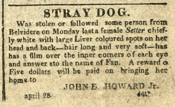 Advertisement: Stray Dog. Was stolen or followed some person from Belvidere on Monday last