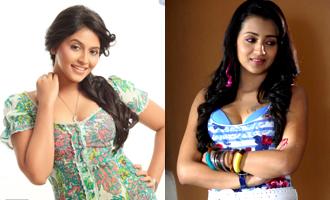 Trisha And Anjali Fight In Thailand Malayalam News