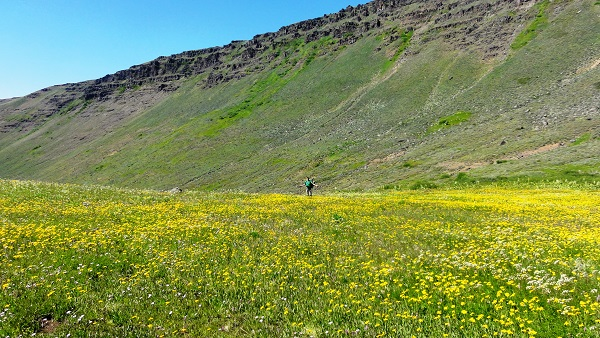 steens mountain, brent fenty, eastern oregon