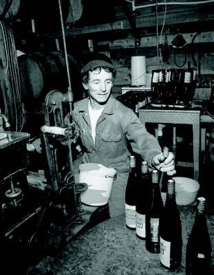 2009-Autumn-Southern-Oregon-People-Roseburg-Richard-Sommer-vintner-wine-winery-vineyard-grape