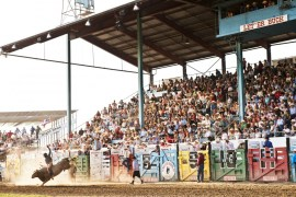 2011-Summer-Northeast-Oregon-Pendleton-Round-Up-rodeo