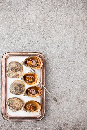 1859_Jan-Feb_Oysters_Carrie-Minns_2