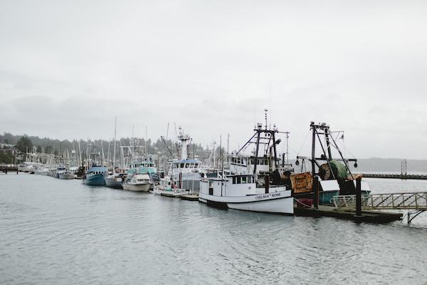 coast, newport, renascent photography