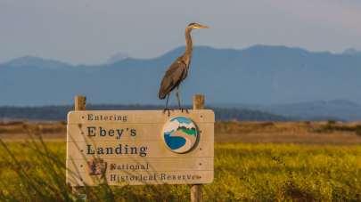 Ebeys Landing National Historic Reserve