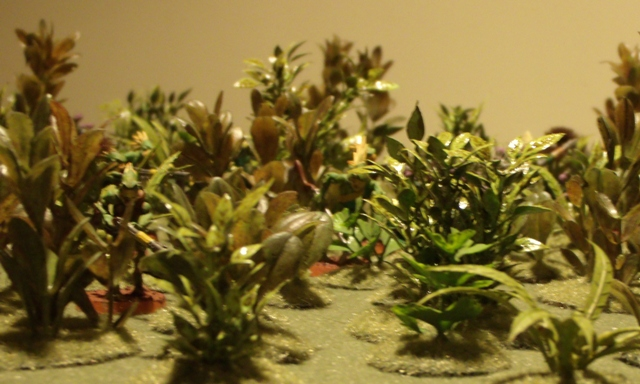 plastic plants come in many different sizes shapes and colors and are an excellent resource to use when making gaming terrain they are very commonly used