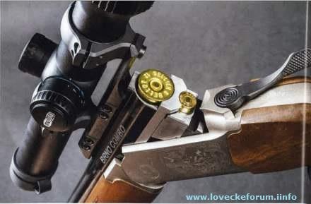 1911hub CZ Brno Combo Rifle 1