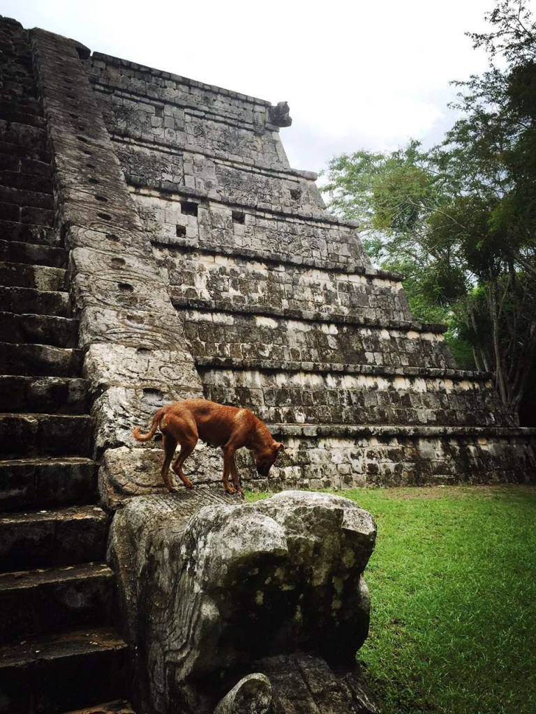 奇琴伊察 Chichén Itzá