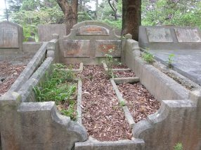 Helena Woodward's grave - before photo