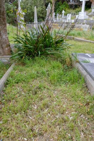 John Potter's grave