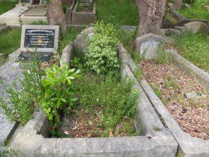 Sydney Smith's grave - before photo