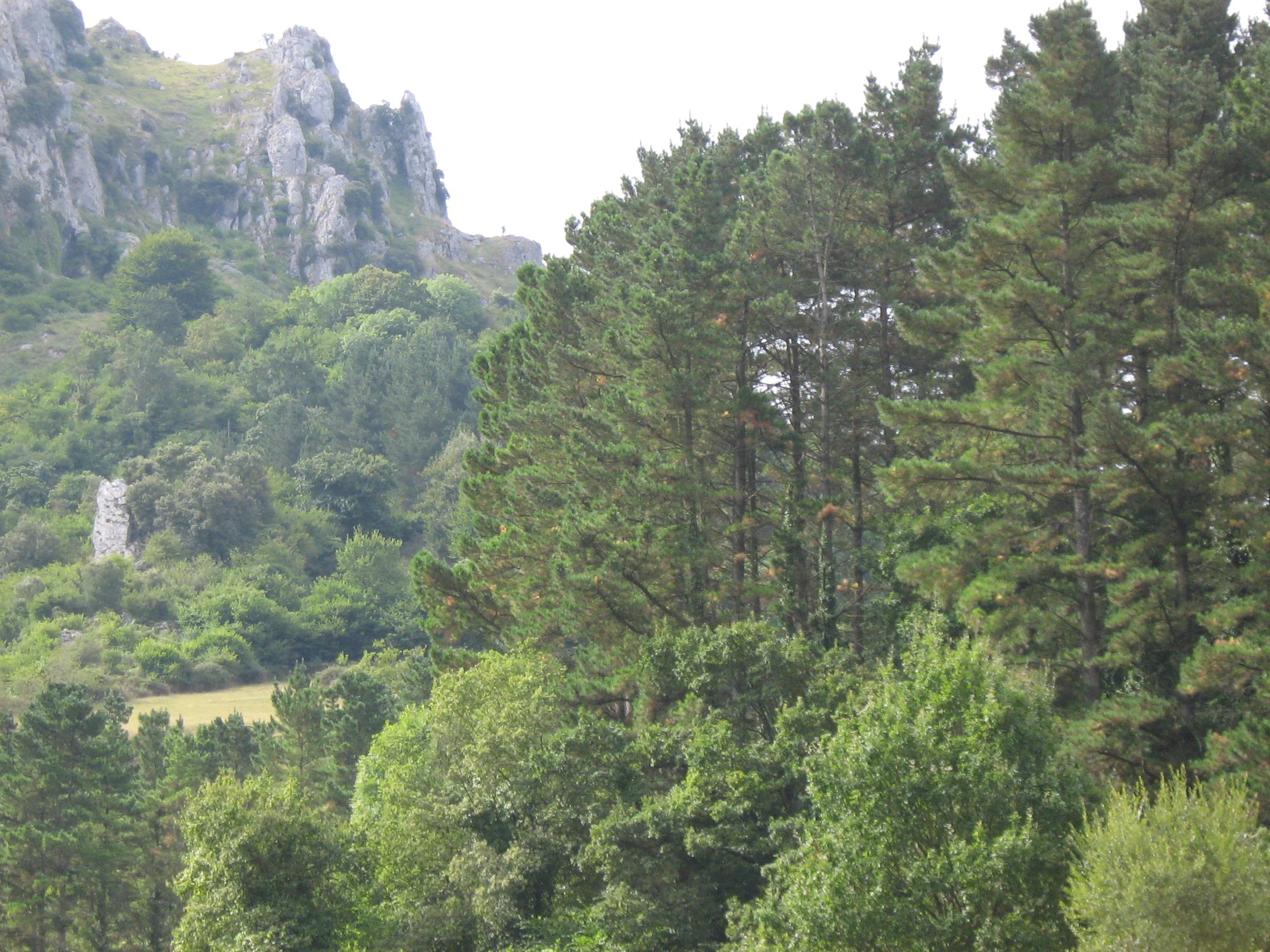 The Basque landscape