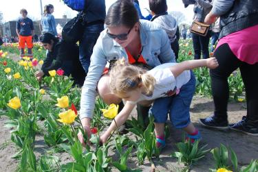 2015.04.19 Tulpen 4