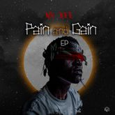 Mr Bee - Pain & Gain