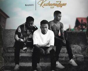 Kashy Ft. Seyi Vibez – Take Am