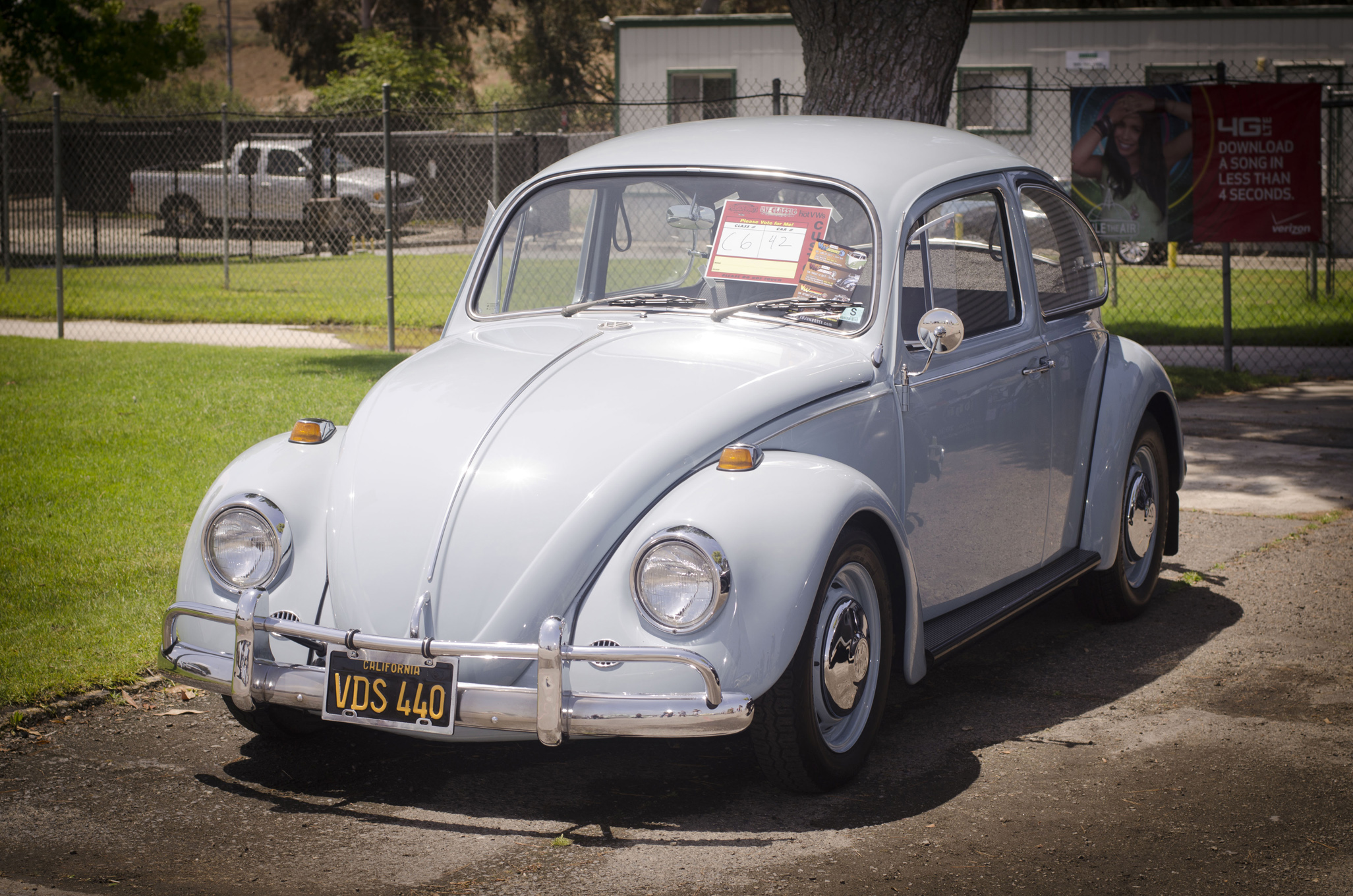vw classic  beetles  vw beetle