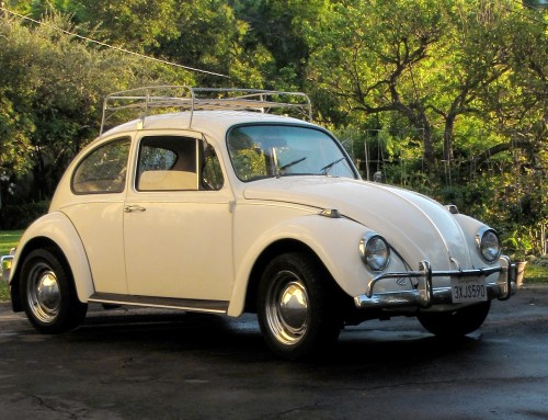 Featured '67 Beetle — Stephan Ruiz