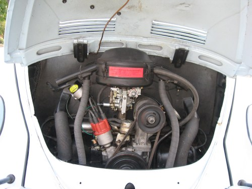 Featured '67 Beetle — Mark Tunnell