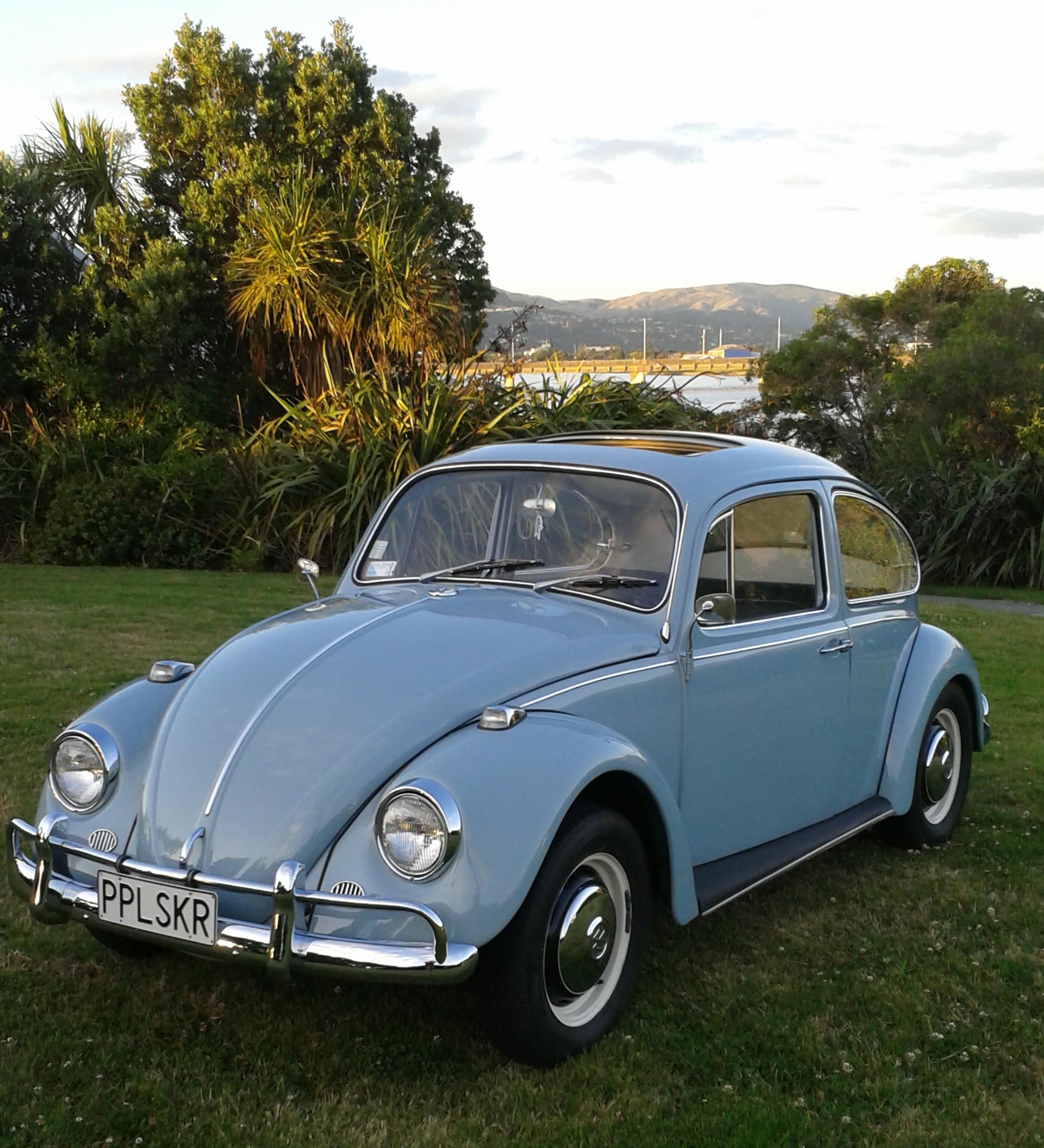 steve parkers  beetle  vw beetle